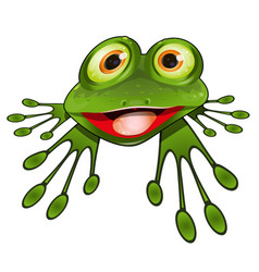 cheerful green frog vector image