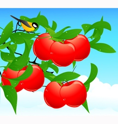 Red apple branch vector image vector image