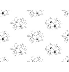sakura cherry blossom flower seamless on white vector image vector image