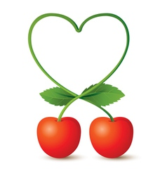 Cherries and heart shape stem vector