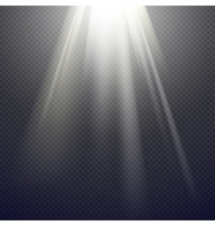 Light effect spotlight vector