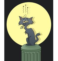 street cat vector image vector image