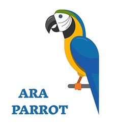 Tropical bird ara parrot vector