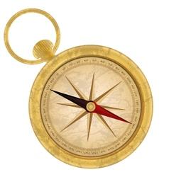 Golden compass icon vector image