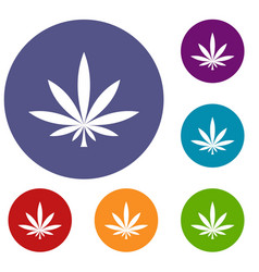 cannabis leaf icons set vector image