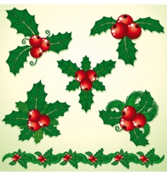 holly decoration vector image vector image
