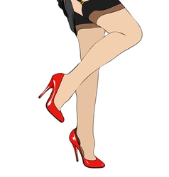 Legs and garters vector image vector image