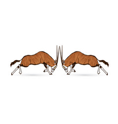 2 oryx jumping to battle graphic vector