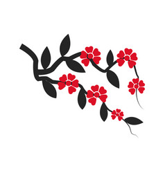 Branch sakura with flowers cherry blossom vector