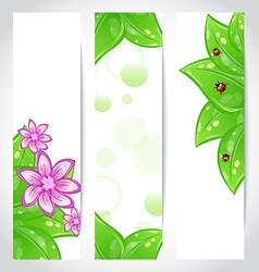 Set of bio concept design eco friendly banners vector image vector image