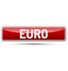 Euro - abstract beautiful button with text vector