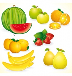 fresh fruits set vector image vector image