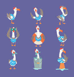 Funny cartoon seagull showing different actions vector