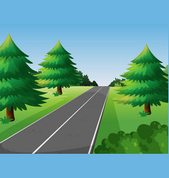 Scene with pine trees along the road vector