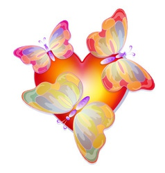 Heart with butterflies vector