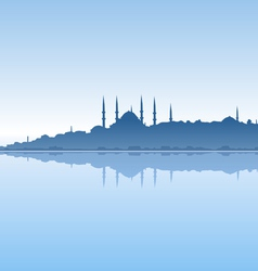 Istanbul and sea vector image