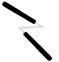 nunchaku vector image