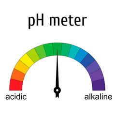 tester ph meter for measuring acid alkaline vector image