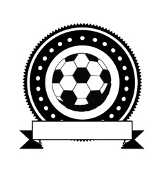 Isolated ball of soccer design vector image vector image