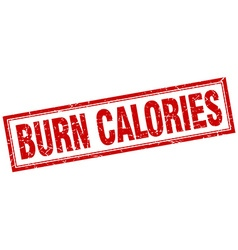 Burn calories red square grunge stamp on white vector