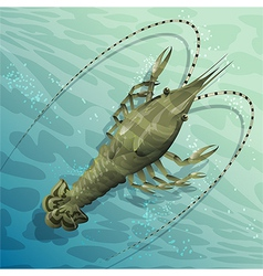 Langouste vector image vector image