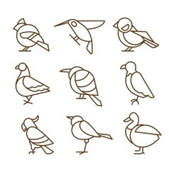 Bird Icons Thin Line Style Flat Design vector image