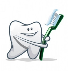 clean teeth vector image