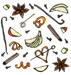 Collection of spices and fruit slices anise vector