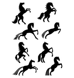 Horses heraldic silhouette icons vector