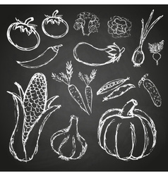 Simple hand drawn doodle vegetables on black board vector