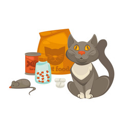 pet vet veterinary cat food and treatment pills vector image
