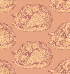 Sketch sleeping cat in vintage style vector image vector image