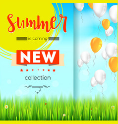 Summer new collection stylish advertisement text vector