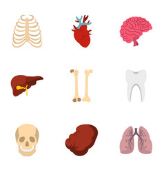 Human organs anatomy icons set flat style vector