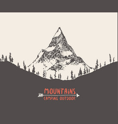 Mountain peak pine forest hand drawn vector
