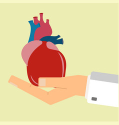 Doctors hand hold human heart healthcare concept vector