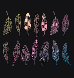 set of stylized bird feathers collection vector image vector image