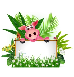 funny pig with blank sign vector image