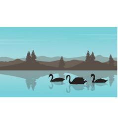 swan landscape silhouettes vector image
