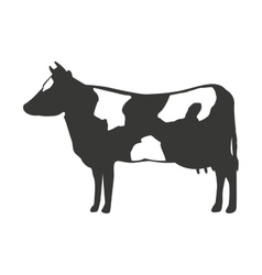 Cow isolated icon design vector