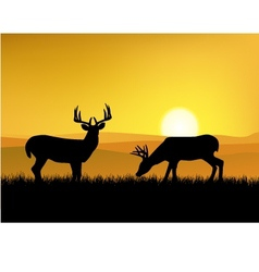 Deer with sunset background vector