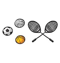 Various balls and rackets vector image vector image