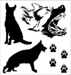 Poses of german shepherd dog vector