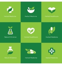 Herbal medicine icons on green background vector