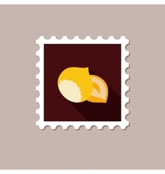 Nut flat stamp with long shadow vector image vector image