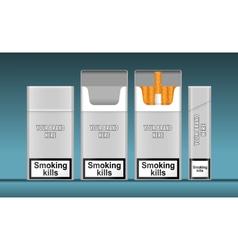 Digital silver cigarette pack mockup vector image