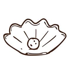 Hand Drawn Shell Pearl vector image