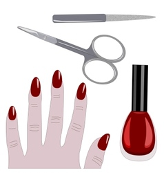 Manicure set and hand vector