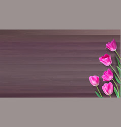 realistic colorful pink tulips set on vector image