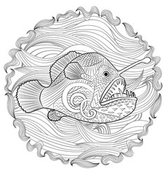 Hand drawn angel fish with high details vector